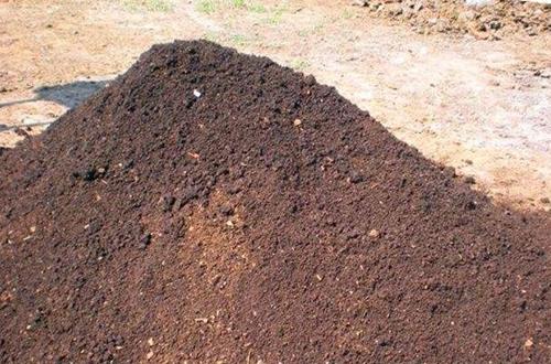 盆栽如何使用营养土 盆栽营养土