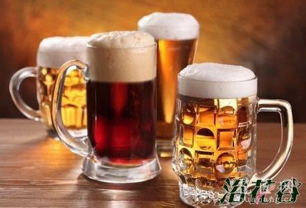 君子兰浇啤酒可促花