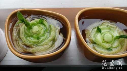 8种不断再生的蔬菜—白菜