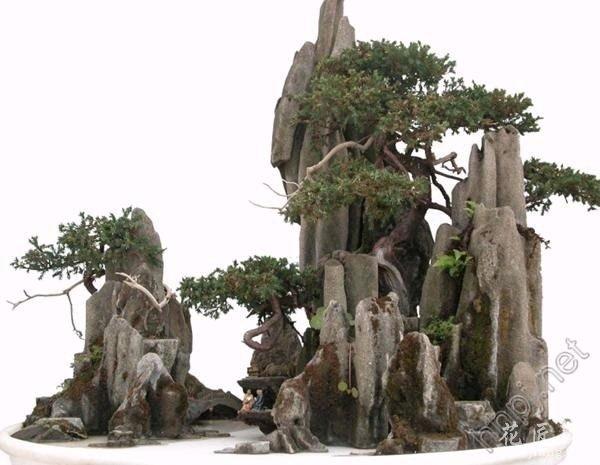 砂积石山水盆景应如何制作?
