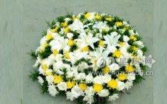 100朵百合花的花语是什么?