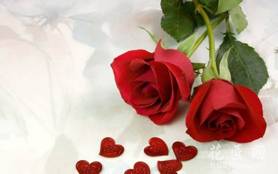 2朵玫瑰代表什么?