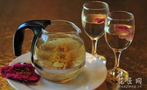 牡丹花茶有什么副作用吗?