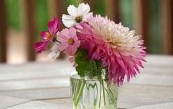 七种美丽的插花形式