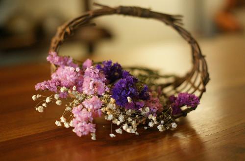 <b>哪些花适合做成干花 哪些花可以做成干花(图)</b>