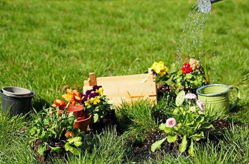 人不在家怎么给花浇水 家中没人怎样浇花(图)