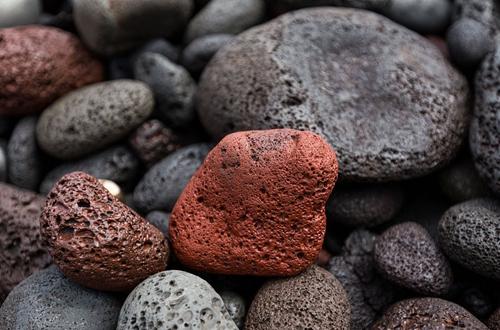火山石可以用来养君子兰吗 火山石对君子兰的好处有哪些(图)