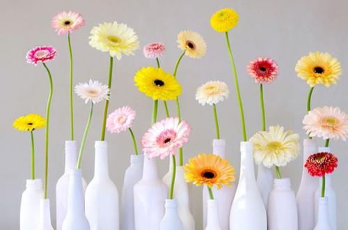 小口径的花瓶该如何插花