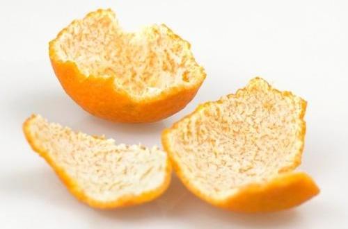 橘子皮可以养花吗,可以用橘子皮