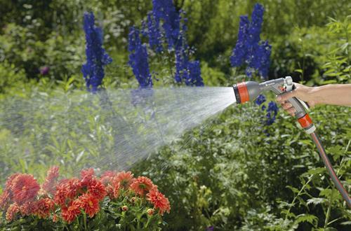 怎么给花浇水 如何正确给花浇水(