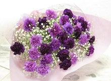 紫色康乃馨花语